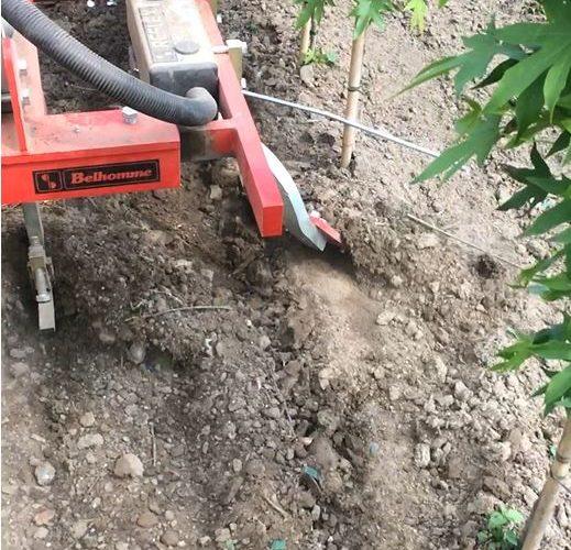 Tree Nursery weeding machine